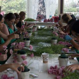 שיעור שזירת פרחים מתוך קורס שזירת פרחים מתחילים