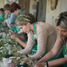 פתיחת קורס שזירת פרחים מתחילים - שיעור ראשון - שזירת סידור בסגנון קלאסי עגול