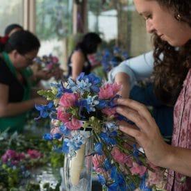מאסטר בשזירת פרחים