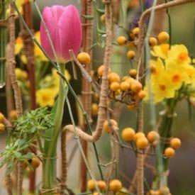 orit hertz - floral artist