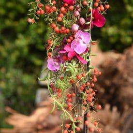 אורית הרץ - שזירת פרחים - סידור פרחים בקונסטרוקציה