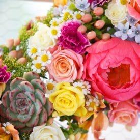 hadar shapira - final project floral design