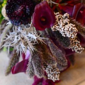 """אורית הרץ - ביה""""ס ללימודי עיצוב ושזירת פרחים - פרויקט הסיום של טלי עופר"""