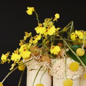 Orit Hertz - floral design - corona concept
