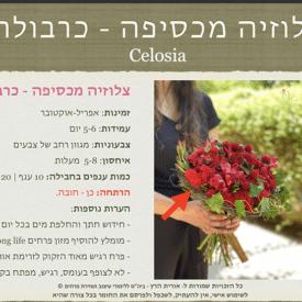 orit hertz floral deisgn school-digital book- cover1