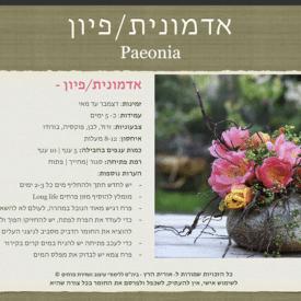 orit hertz floral deisgn school-digital book- cover3
