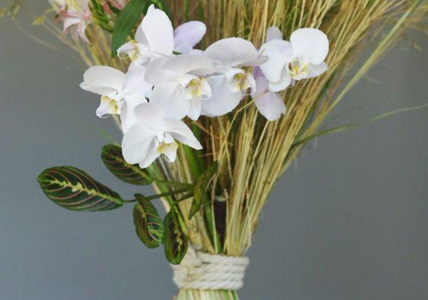 סיפורי פרחים – עשב שוטה עבור אדם אחד הוא אוצר של אחרת